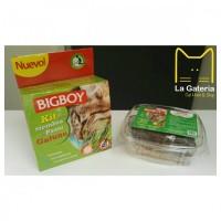 Kit sencillo hierba digestiva